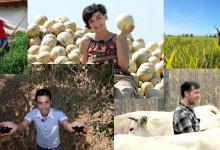 """AGRICOLTURA – Ecco il """"Pacchetto giovani"""": finanziamenti per agricoltori under 40"""